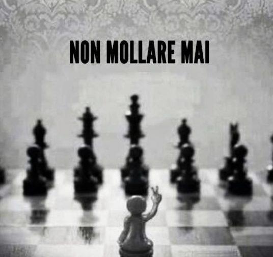 CREDERCI E NON MOLLARE MAI !!!